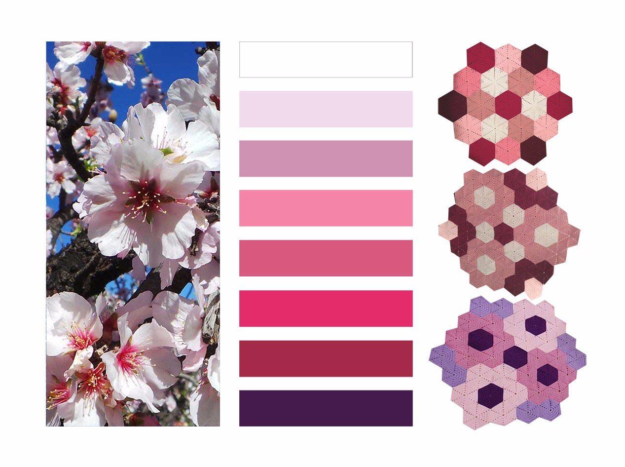 Color-Flor-de-Almendro